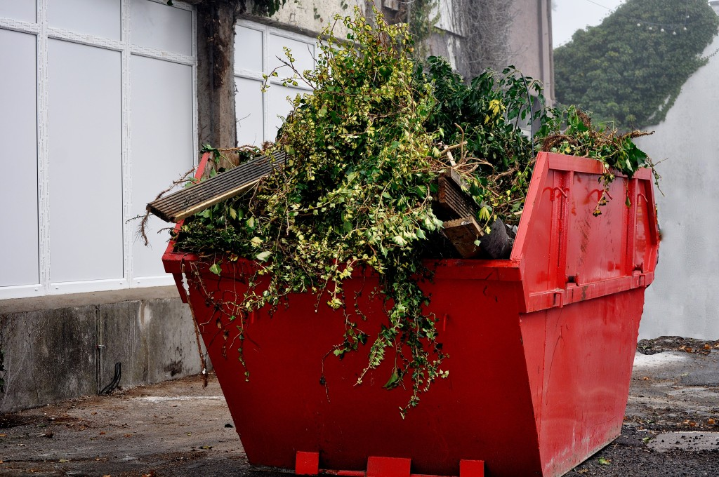 May_ Use Your Skip Bin Like a Pro - Placement Tips [OPT]